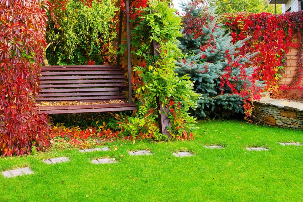 Leuchtender Garten im Herbst